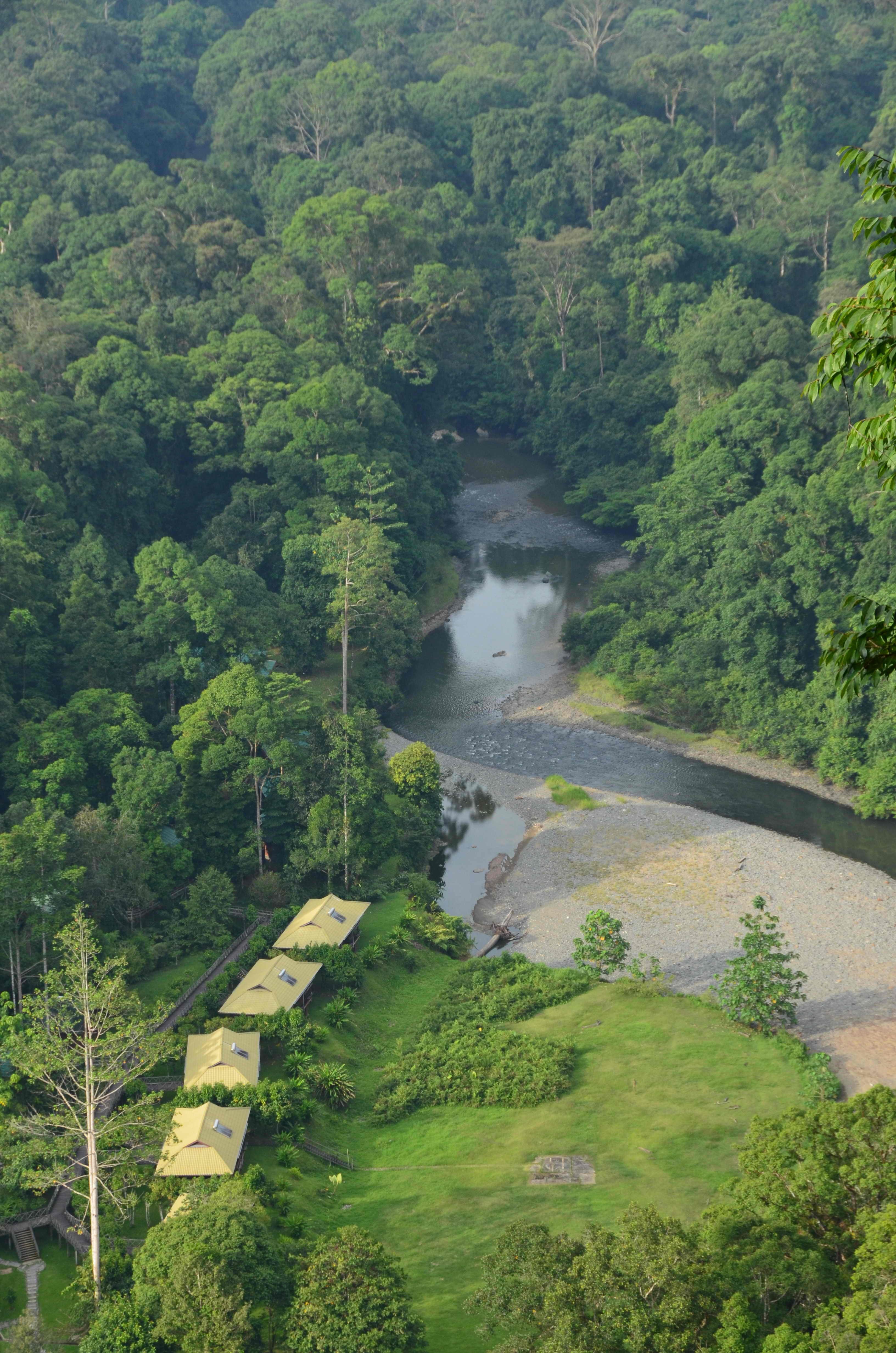 Borneo Dream Travel And Tours