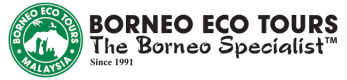 BORNEO ECO TOURS | BLOG