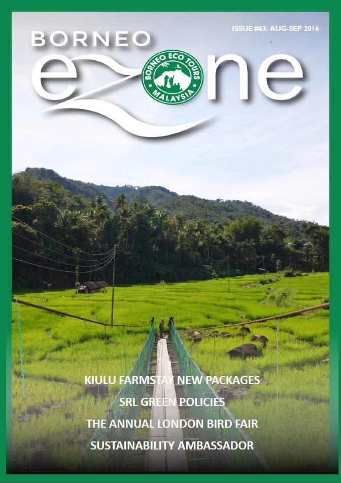 Borneo Ezone 63