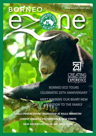 Borneo Ezone 64