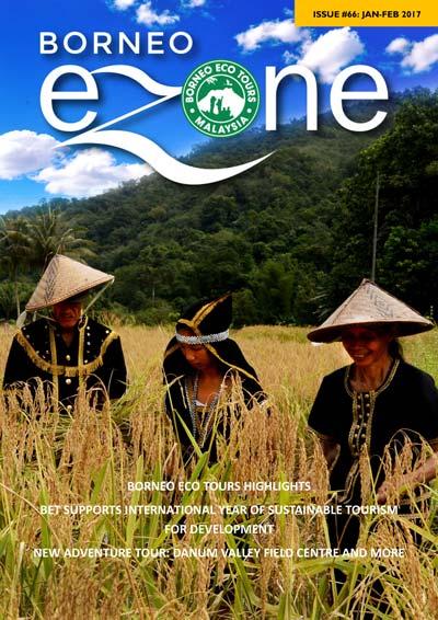 Borneo Ezone 66